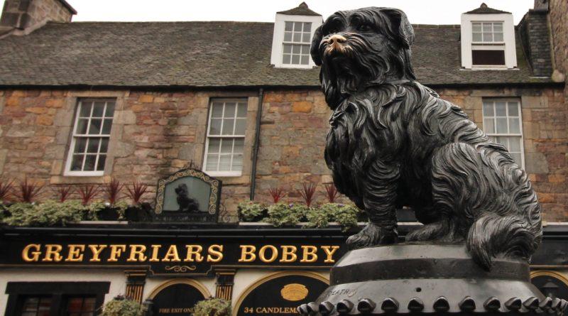 Greyfriars Bobby: o cão mais famoso e fiel de Edimburgo